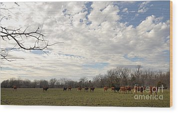 Wood Print featuring the photograph Going Home by Cheryl McClure