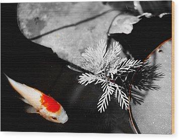Gold Fish Black And White Wood Print