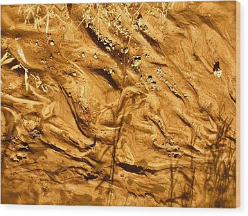 Wood Print featuring the photograph Gold River by Brian Sereda