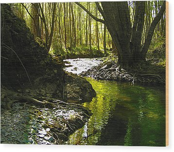 Gold River Wood Print by Guadalupe Nicole Barrionuevo
