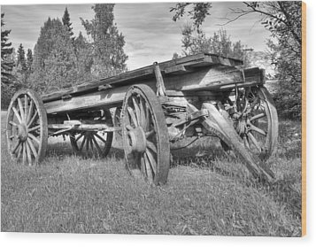 Gold Rush Wagon Wood Print by Thomas Payer