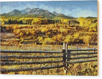 Golden Autumn Wood Print by Jeff Kolker