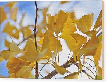 Golden Autumn Wood Print by Kaye Menner