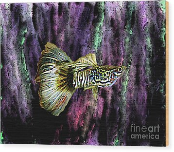 Golden Fish Wood Print by Mario Perez