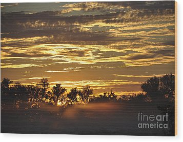 Wood Print featuring the photograph Golden Fog by Tamera James