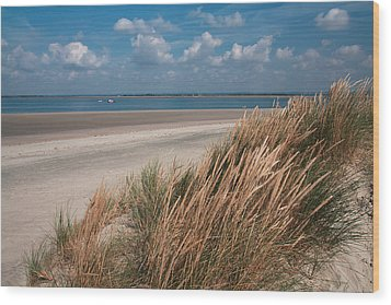Wood Print featuring the photograph Golden Grasses by Shirley Mitchell