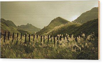 Golden Hills Wood Print by Tnwy