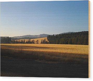 Golden Landscape Wood Print by Debbi Saccomanno Chan