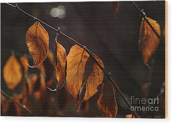 Wood Print featuring the photograph Golden Leaves by Vilas Malankar