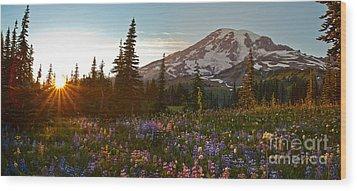 Golden Meadows Of Wildflowers Wood Print by Mike Reid