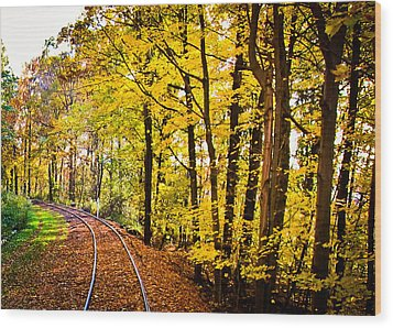 Wood Print featuring the photograph Golden Rails by Sara Frank