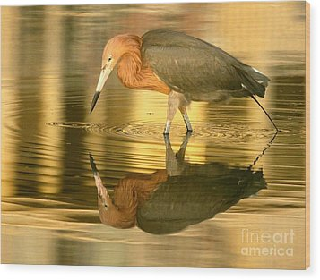 Golden Reflection Wood Print by Myrna Bradshaw