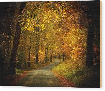Golden Road Wood Print by Joyce Kimble Smith