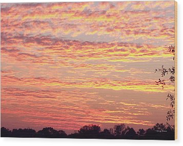 Golden Sunset 002 Wood Print by George Bostian