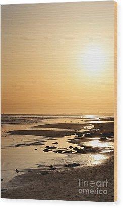Golden Sunset- California Coast Wood Print by Danuta Bennett