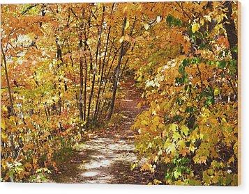Golden Trail Wood Print