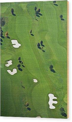Golf Course Wood Print by Daniel Reiter