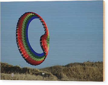 Good Day For A Kite Wood Print by Lois Lepisto