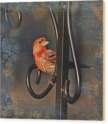 Good Moning Sunshine IIi Wood Print by Debbie Portwood