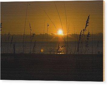 Good Morning Wood Print by Cindy Rubin