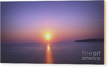 Wood Print featuring the photograph Good Morning Starshine by Nancy Dole McGuigan