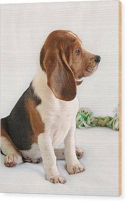 Good Ol' Snoopy Wood Print by Christine Till