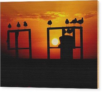 Goodnight Gulls Wood Print by Karen Wiles