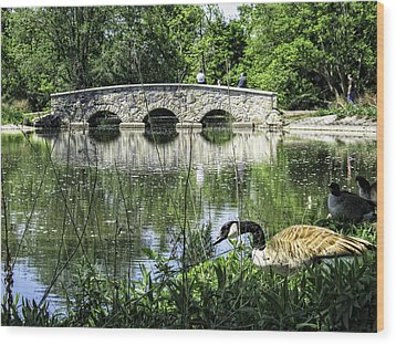 Wood Print featuring the photograph Goose And Bridge At Silver Lake by Tom Gort