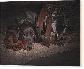Gordon Setter With Two Guns... Wood Print