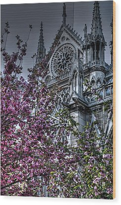 Gothic Paris Wood Print by Jennifer Ancker