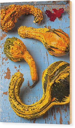 Gourds On Wooden Blue Board Wood Print by Garry Gay