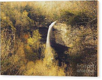 Grace Falls Wood Print