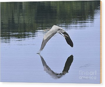 Wood Print featuring the photograph Graceful Heron by Nava Thompson