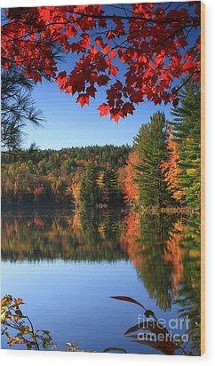 Grafton Pond Wood Print by Butch Lombardi