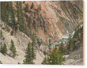 Wood Print featuring the photograph Grand Canyon And Yellowstone River by Living Color Photography Lorraine Lynch