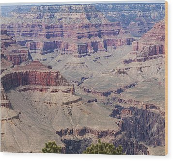 Grand Canyon Colorado River Page 7 Of 8 Wood Print by Gregory Scott