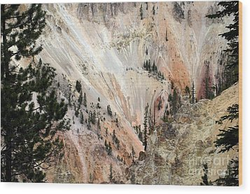 Wood Print featuring the photograph Grand Canyon Colors Of Yellowstone by Living Color Photography Lorraine Lynch