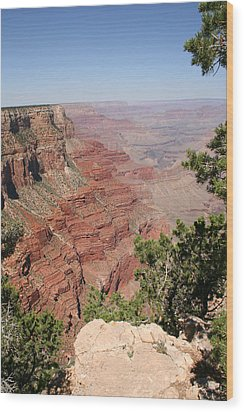 Grand Canyon National Parc Usa  Wood Print by Audrey Campion