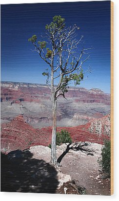 Wood Print featuring the photograph Grand Canyon Number Two by Lon Casler Bixby