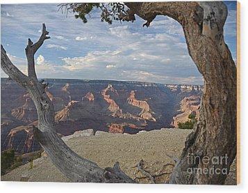Grand Canyon Tree Wood Print