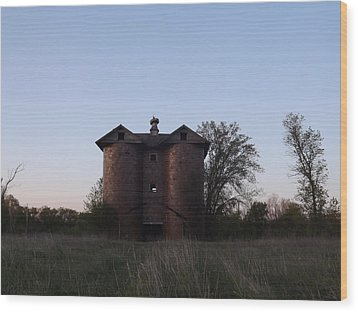 Wood Print featuring the photograph Grand Old Silo by Gerald Strine