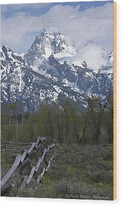 Grand Teton Fence Wood Print by Charles Warren