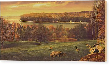 Grand View Wood Print by Doug Kreuger
