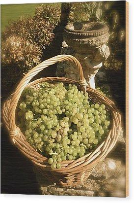 Grape Harvest Wood Print by John Colley