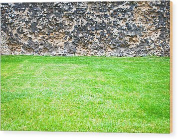 Grass And Stone Wall Wood Print by Tom Gowanlock