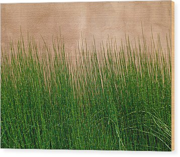 Wood Print featuring the photograph Grass And Stucco by David Pantuso