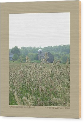 Wood Print featuring the photograph Grass In Blossom With Barn-i by Patricia Overmoyer