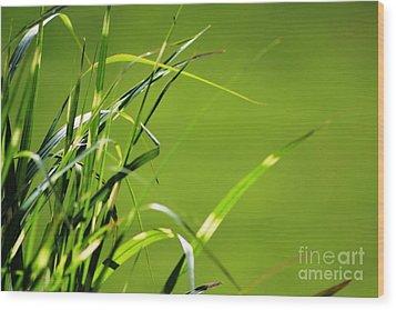 Grass Is Always Greener Wood Print