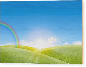 Grassland In The Sunny Day With Rainbow Wood Print by Setsiri Silapasuwanchai