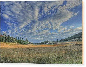 Wood Print featuring the photograph Grassy Field by Tyra  OBryant